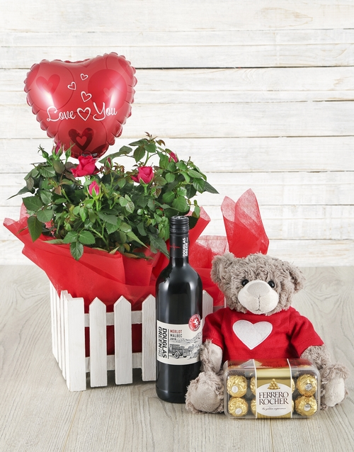 Rose Bush, Wine, Balloon, Teddy & Ferrero