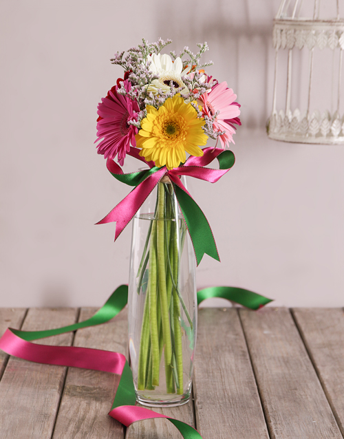 Gerbera Daisies in a Cylindrical Vase