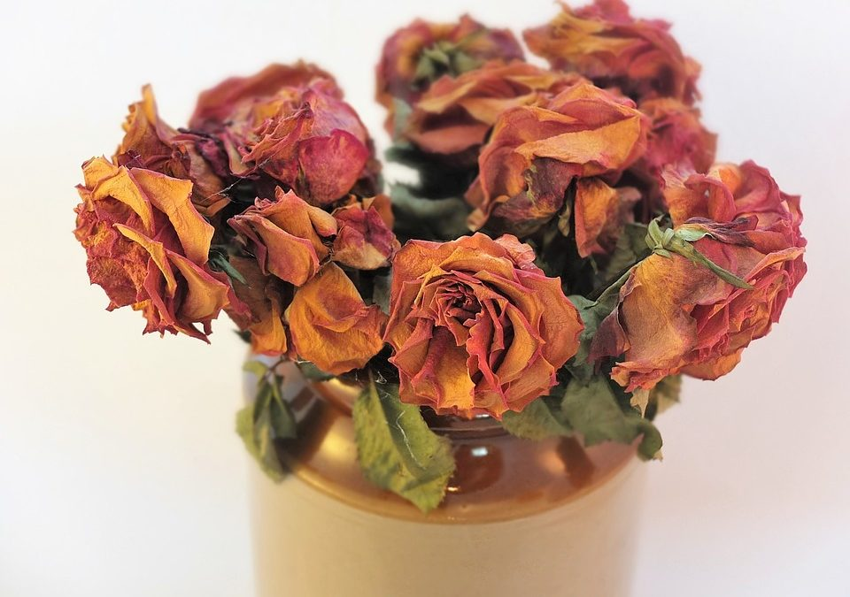 How to Dehydrate Flowers at Home