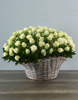 roses 100 White Roses in a Basket