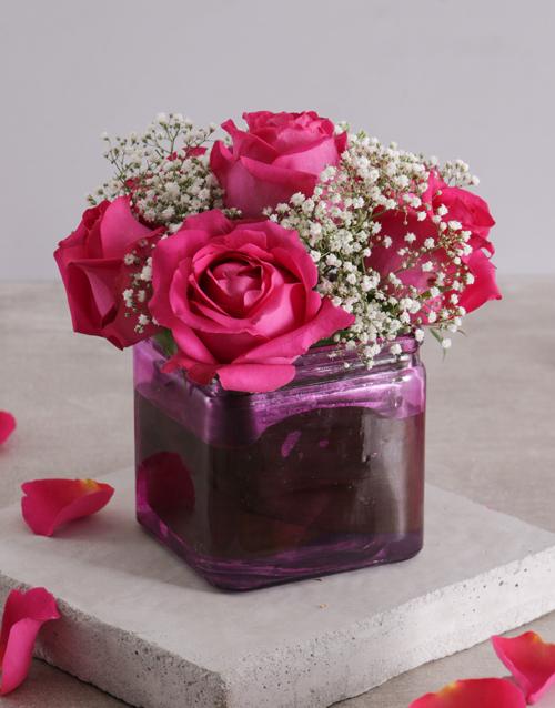 roses Pink Lady Rose Vase