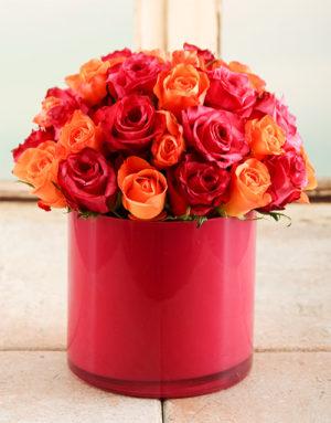 roses Fire Star Rose Vase