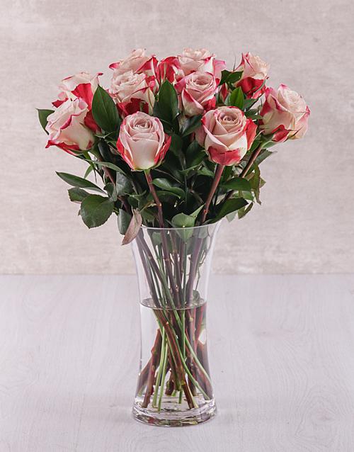 roses Candy Cane Rose Vase