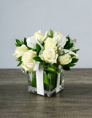 roses Small White Rose Surprise