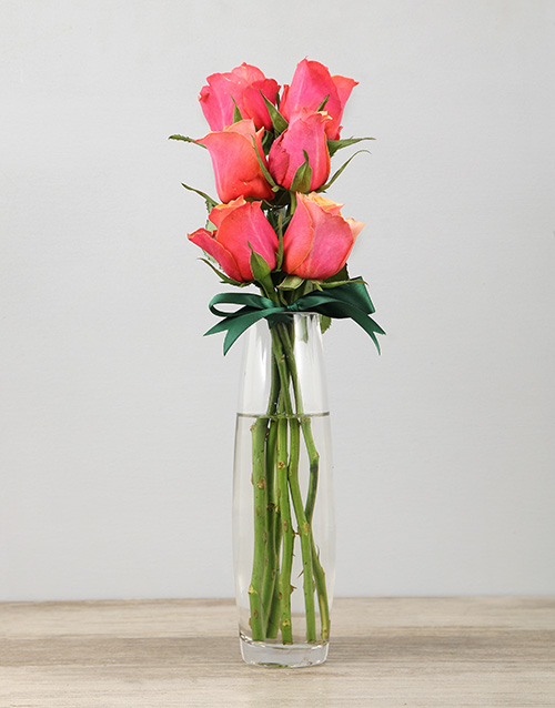 roses Cherry Brandy Roses in a Bullet Vase