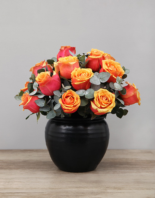 roses Cherry Brandy Roses in Black Ceramic Pot