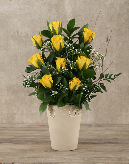 roses Yellow Roses Pot