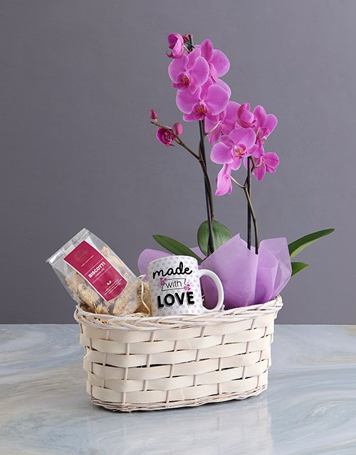 orchids Phalaenopsis Orchid Gift Basket
