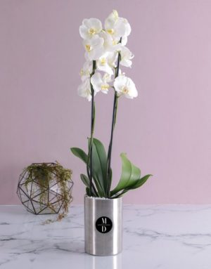 orchids Personalised Initial Orchid Wine Cooler