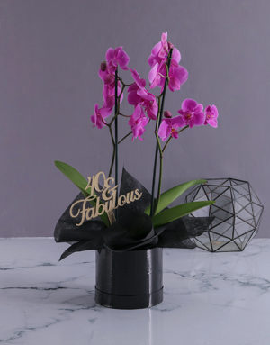 orchids Personalised Fabulous Birthday Orchids