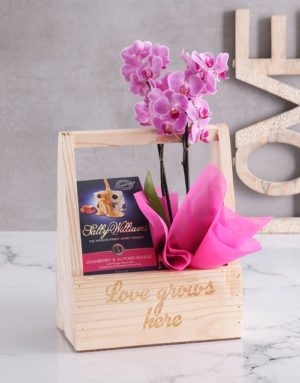 orchids Love Grows Here Orchid Crate