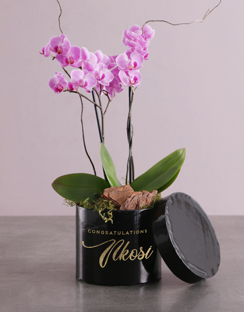 orchids Endless Opulence Orchid Hat Box