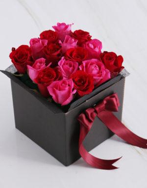 roses Cerise Rose Blossoms