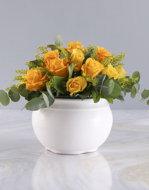 roses Radiant Yellow Roses in White Pot