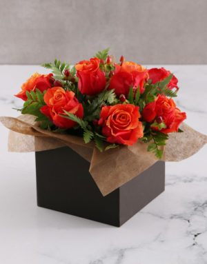 roses Cherry Brandy Roses in Black Box
